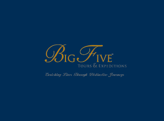 Big Five Rectangle Logo