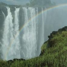 303-Zambia