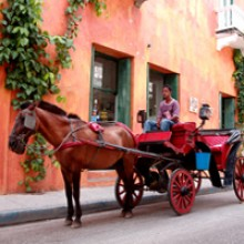 colombia-horse-carriage