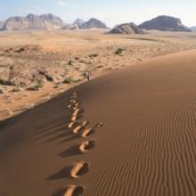jordan-wadi