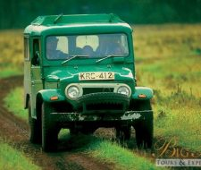 Jeep Safari | Big Five Tours
