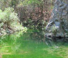 Parque Nacional Cerros de Amotape | Big Five Tours