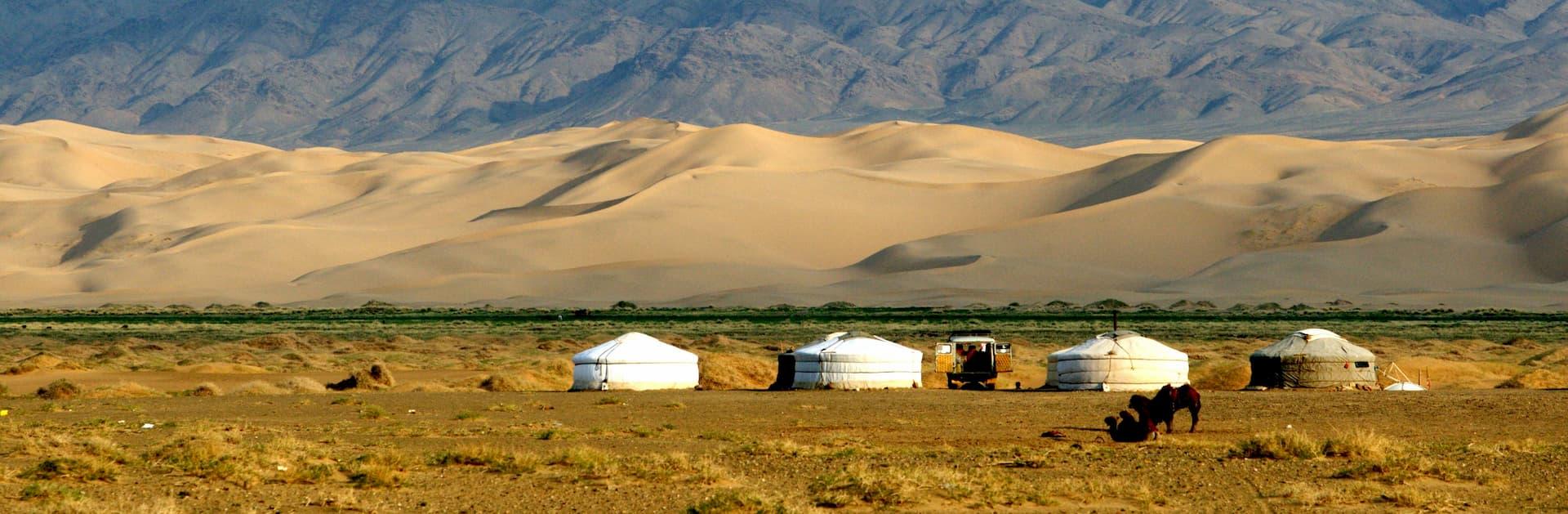 Nomadic Tours And Travel