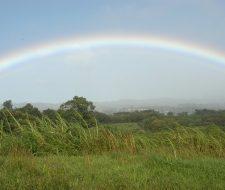Costa Rican Rainbow | Big Five Tours