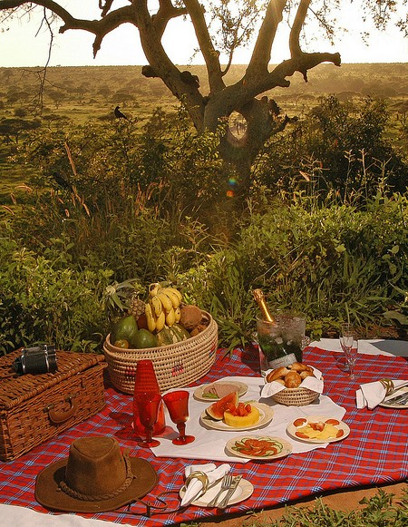 Tanzania Picnic