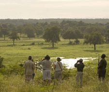 Sanctuary-Puku-Ridge-Camp-Zambia | Big Five Tours