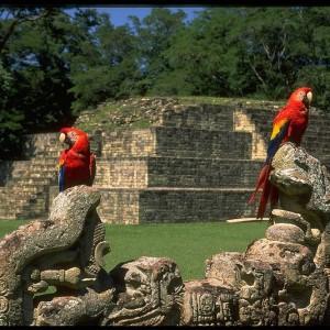 Mayan City Copan