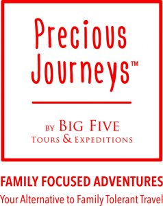 Precious Journeys | Big Five Tours