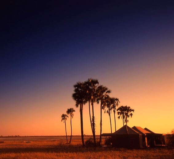 Jack's Camp in Botswana