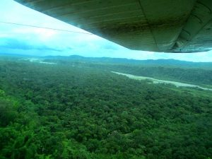 An aerial view of the Amazon Rainforest in Ecuador