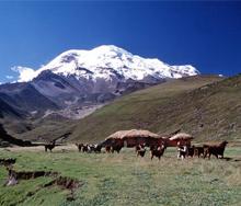 Estrella del Chimborazo base camp copy