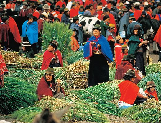 An Ecuadorian market