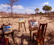 Paintings | Big Five Tours