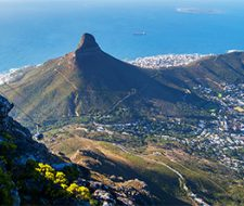 Cape Town | Big Five Tours
